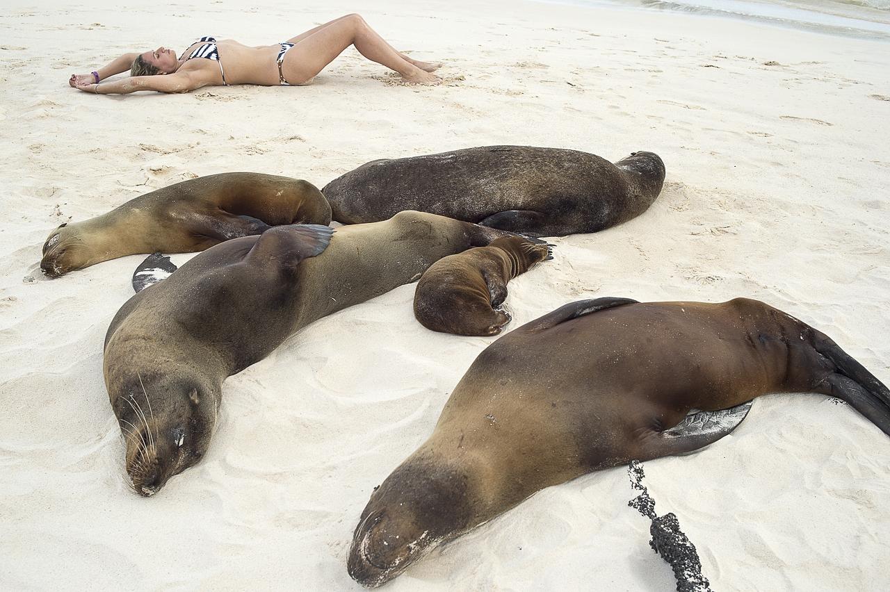 playa-cerro-brujo-islas-galápagos