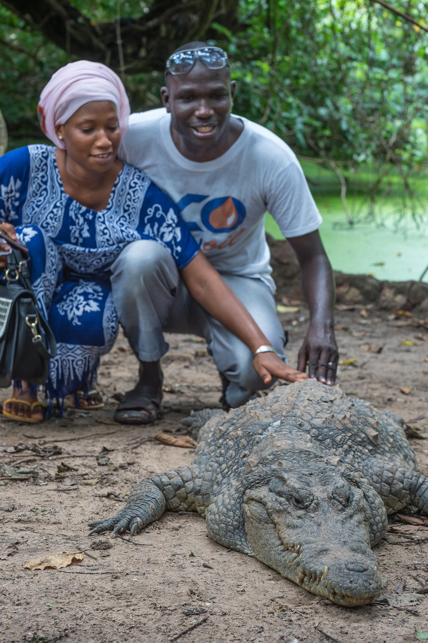 gambia-eterna-sonrisa-cocodrilos